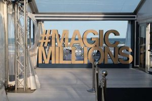 Magic Millions Project Image