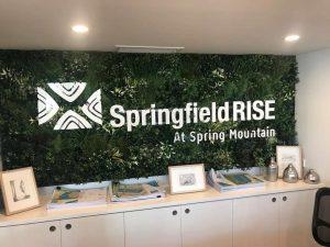 Springfield Rise
